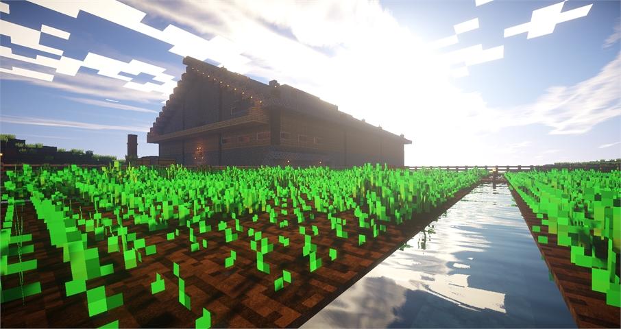 Feld auf dem Survival Server